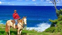 Maui Horseback-Waterfall and Ocean Tour, Maui, Horseback Riding