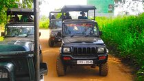 Udawalawe National Park - World's best place to see wild, Galle, Attraction Tickets