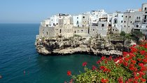Puglia: classic wine tour with tasting, Lecce, Wine Tasting & Winery Tours