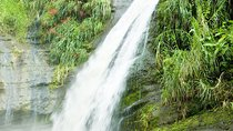 Grenada Island Tour: Concord Waterfall, Gouyave Nutmeg Station and Grand Etang Lake, Grenada, null
