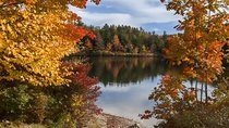 Fall foliage tour in New Hampshire, Boston, Day Trips