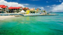 Grand Cayman Shore Excursion: Island Sightseeing Tour by 4x4, Cayman Islands, Ports of Call Tours