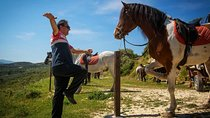 Crete Finikia and Giouchtas Mountains Horse Riding Tour with Lunch, Heraklion, Horseback Riding