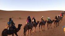 2 Days Zagora Desert Eperience from Marrakech, Marrakech, Overnight Tours