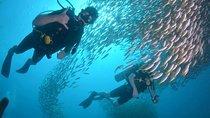 Discover SCUBA Diving, Koh Lipe Thailand