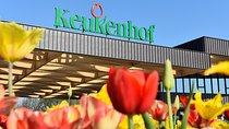Day trip to Keukenhof Garden and Flowerfields from The Hague, South Holland, Day Trips