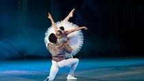 Swan Lake Ballet admission, St Petersburg, Attraction Tickets