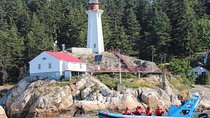 Vancouver City and Seals Scenic Boat Tour Tickets