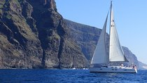 Los Gigantes Whale Watching Charter by Sail Boat Tickets