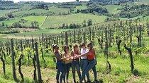Chianti Wine Tour, Florence, Wine Tasting & Winery Tours