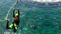 Coasteering experience in Gran Canaria, Gran Canaria, 4WD, ATV & Off-Road Tours