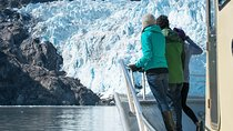 Full-Day Kenai Fjords National Park Adventure Cruise, Seward, Day Trips