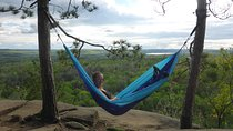 Algonquin Provincial Park Day Tour from Toronto, Ontario, Day Trips