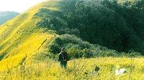 Dzukou Valley Trek, Assam, Hiking & Camping