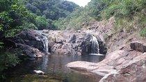 Hong Kong Nature Tour: Ponds and Waterfalls, Hong Kong SAR, Nature & Wildlife