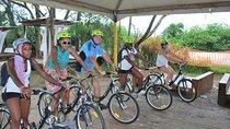 Southern Beaches of Florianópolis Bike Tour, Florianopolis, Bike & Mountain Bike Tours