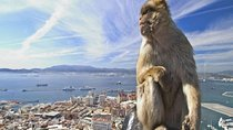 Gibraltar Full Day Tour from Seville Tickets