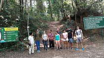 Doi Inthanon National Park & Trekking Pha Dok Siew, Chiang Mai, Attraction Tickets