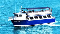 Sightseeing Cruise of Biscayne Bay Tickets