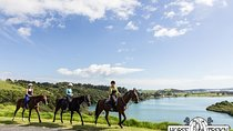 Bayview Scenic Horseride, Bay of Islands, 4WD, ATV & Off-Road Tours