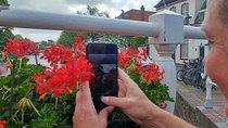 Smartphone fotografie workshop: creatief aan de slag!, North Holland, Craft Classes