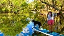 Byron Stand Up Paddle Nature Tour, Byron Bay, Cultural Tours