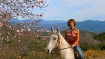 Alanya 3 Hour Horse Back Riding, Turkish Riviera, Horseback Riding
