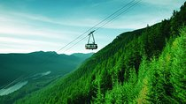 Private Tour: Capilano Suspension Bridge and Grouse Mountain Tickets