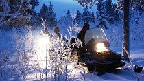 Snowmobile Aurora Expedition With Dinner, Northern Sweden, Ski & Snow