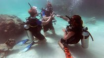 3-Day PADI Open Water Scuba Diving Certification Course in Koh Phi Phi, Krabi, Scuba Diving