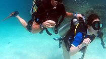 Half-Day PADI Discover Scuba Diving from Koh Phi Phi, Southern Thailand and Andaman Coast, Scuba...