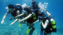 BAPTISM OF THE SEA (Introductory Dive), Trapani, Other Water Sports