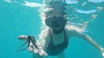 Culebra Snorkeling, Fajardo, Snorkeling