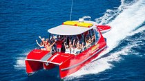 Whitehaven Beach and Hill Inlet Lookout Full-Day Snorkeling Cruise by High-Speed Catamaran, Airlie...