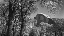 In The Footsteps of Ansel Adams photo class, Yosemite National Park, Photography Tours