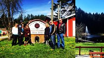 Victoria to Cowichan Valley Wine Tour, Vancouver Island, null