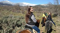 Horse Riding and Tapas Picnic Madrid, Madrid, 4WD, ATV & Off-Road Tours