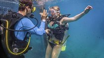 Learn to Dive - Puerto Vallarta Beginners Scuba Course, Puerto Vallarta, Scuba Diving