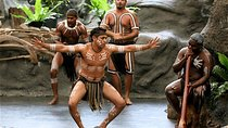 Tjapukai Indigenous Culture Experience and Palm Cove Day Trip from Cairns, Queensland, City Tours