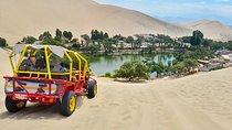 Paracas und Huacachina ab Lima: Ballestas Inseln, Sandboarding