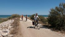 Panoramic Bike Tour: Castles and the Highs of Malaga Tickets