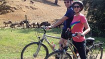 Countryside Bike Tour in Seville Tickets