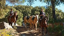 Horse Riding Tour of Grazalema Natural Park in Cadiz