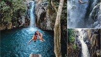 Full-Day Private Tour: The Waterfalls Adventure of Northern Bali, Ubud, Nature & Wildlife