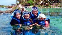 Priority Access: Xel-Há All-Inclusive Day Trip from Playa del Carmen, Cozumel