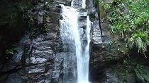 Horto Waterfalls Circuit Adventure Tour in Tijuca National Park