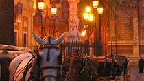 Horse and Buggy Ride in Seville