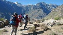 2-tägige individuelle Colca-Tal-Wanderung