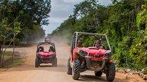 Jungle Buggy Tour from Playa del Carmen Including Cenote Swim, Playa del Carmen