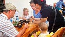 Familien Feinschmecker Erfahrung in Hua Hin